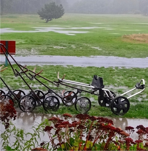 standing water on the golf course (Allan's photo)