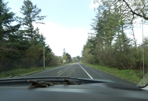 heading north out of Ilwaco in clear but breezy weather
