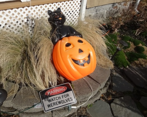 The wind has blown around Jodie's Halloween decorations.