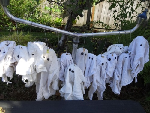 Allan had made this year's set of apple ghosts.