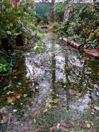 lawn path underwater
