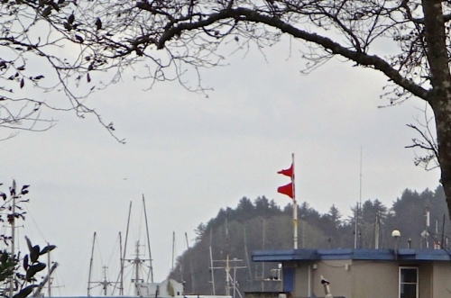 The double flag wind warning at the port mystified us.  Wind was not part of the weather today.  (Allan's photo)