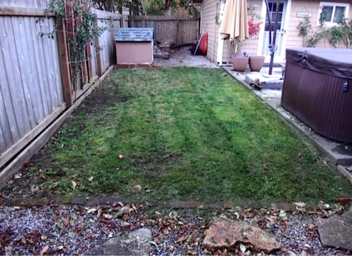 J's lawn, done
