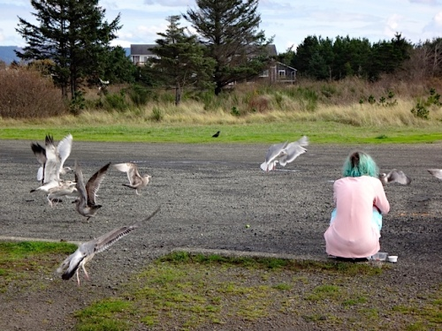 a visitor feeding gulls