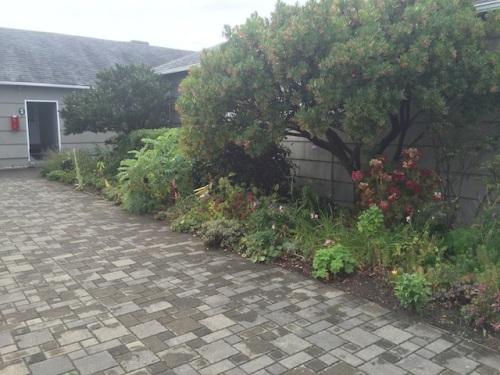 center courtyard on a grey Tuesday