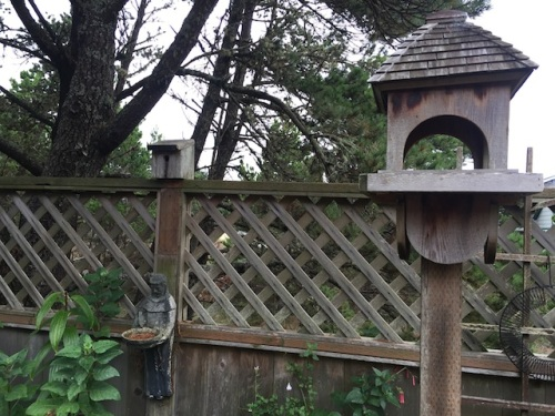 Goodbye to the bird feeders, now holding only pine needles.