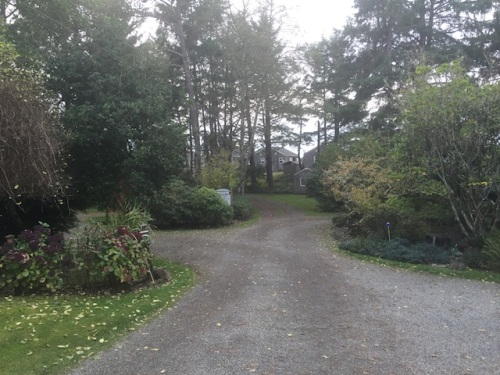 the entry road.  Cottages straight ahead, A Frame to the left, Mary and Denny's house and the fenced garden to the right.