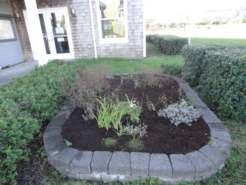 with mulch applied