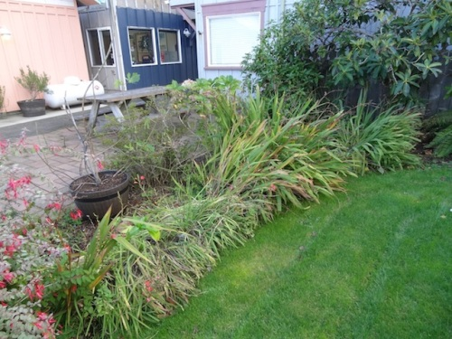 before, with annoying crocosmia (including the pesky orange kind)