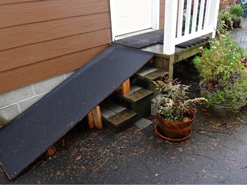 a new ramp for our good friend Misty, whose hind legs no longer work very well.
