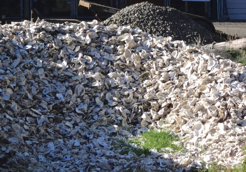 Lots of other hardscaping material for sale, including oyster shells.  (Allan's photo)