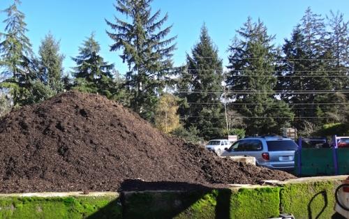 plenty of Soil Energy on hand.  (Allan's photo)