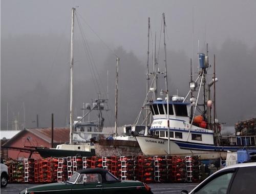 port parking lot (Allan's photo)