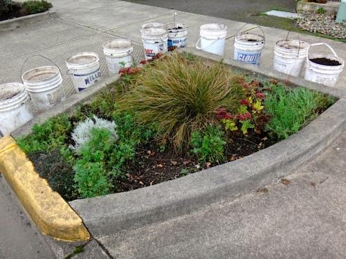 buckets poised (Allan's photo)
