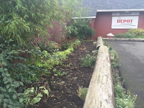 autumnal Depot