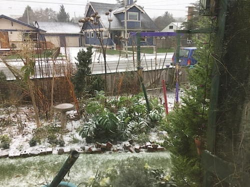 from the front window