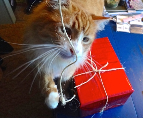 Skooter helped Allan wrap some presents.