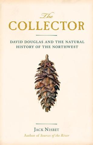 collector1.jpg